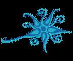 Wesenskern Logo